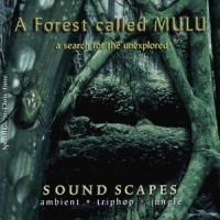 A Forest Called Mulu Mp3
